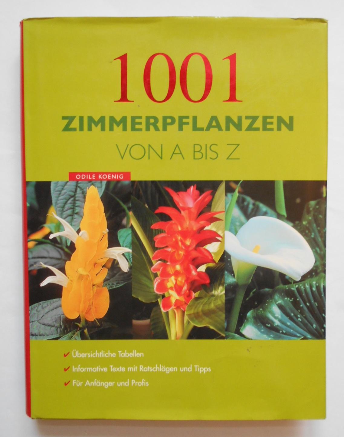 10508-1.jpg